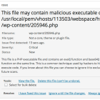 Suspicious Files in WordPress
