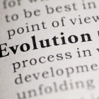 Fake Dictionary Dictionary definition of the word Evolution.