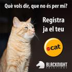 dot-cat-660-cat