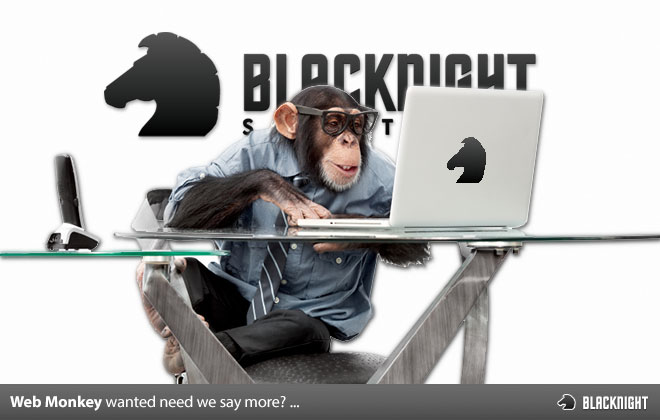 Web Monkey Wanted