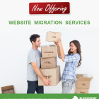 Website Migration Service