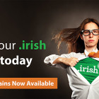 Register premium .irish domain names