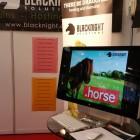 blacknight-horse-dublin-rds-2015