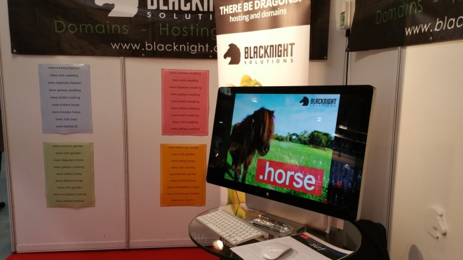 blacknight-horse-dublin-rds-2015
