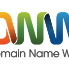 domainnamewire-logo-large