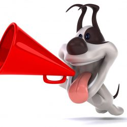 dog with megaphone shouting about domain discounts