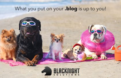 Bundle your .BLOG domain name with a hosting plan and Blacknight will give you back €15* every year! Seriously!