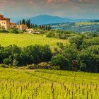 A view of Tuscany. Let's celebrate Europe Day with an amazing deal on 10-year registrations of new .EU domains.