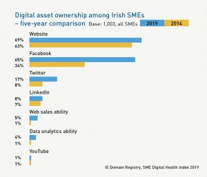 Graph comparing Digital Asset Ownership among Irish SMEs in 2019 versus 2014, covering websites, Facebook, Twitter, LinkedIn, Web sales ability, Data anaytics ability, and YouTube