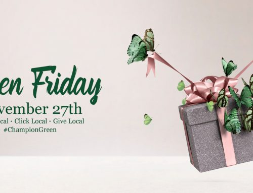 Let's Turn Black Friday into Green Friday – #BuyIrishOnline